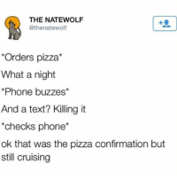 still cruising (@bigkidproblems - @thenatewolfman): THE NATEWOLF  @thenatewolf  Orders pizza*  What a night  Phone buzzes*  And a text? Killing it  checks phone*  ok that was the pizza confirmation but  still cruising still cruising (@bigkidproblems - @thenatewolfman)