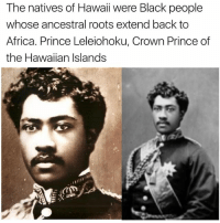 Africa, Memes, and Prince: The natives of Hawaii were Black people  whose ancestral roots extend back to  Africa. Prince Leleiohoku, Crown Prince of  the Hawaiian Islands