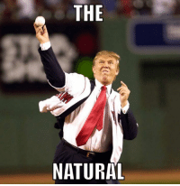 Who the fuck wears a baseball jersey over a suit jacket , you know who @realdonaldtrump ( Fucking stupid ass , racist , misogynistic, hypocrite.. what ? .. cmon man ,,,it's #lockerroomtalk #neverpelos ( note : the ball is bigger than his hand #gacho: THE  NATURAL Who the fuck wears a baseball jersey over a suit jacket , you know who @realdonaldtrump ( Fucking stupid ass , racist , misogynistic, hypocrite.. what ? .. cmon man ,,,it's #lockerroomtalk #neverpelos ( note : the ball is bigger than his hand #gacho