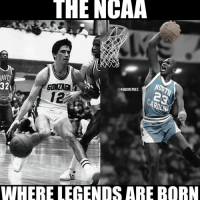 Basketball, Funny, and March Madness: THE NCAA  321  NBAMEMES  12  WHERE LECENDS ARE BORN Gonzaga vs. North Carolina... who you got? ... gonzaga north carolina unc northcarolina march madness marchmadness ncaa ncaamemes nba meme memes funny basketball nbamemes