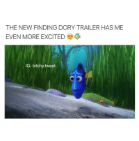 Funny, Videos, and Finding Dory: THE NEW FINDING DORY TRAILER HAS ME  EVEN MORE EXCITED  IG: bitchy.tweet IM SO EXCITED TO SEE IT follow @bitchy.tweet (me) for more funny videos 🐠