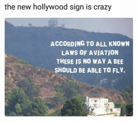 hollywood sign: the new hollywood sign is crazy  ACCORDING TO ALL KNOWN  LAWS OF AVIATION  THERE IS NO WAY A BEE  3 SHOULD BE ABLE TO FLY.