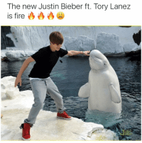 Memes, Tory Lanez, and 🤖: The new Justin Bieber ft. Tory Lanez  is fire Dat bludclaart head fam 😂😭😭🔥🔥🔥 OfficialVideo