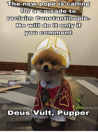 Bodies , Memes, and Edgy: The new pope is calling  for  an crusade to  reclaim Constantinople  He will do it only if  you comment  Deus Vult, Pupper Go like Edgy Memes and Fashy Dreams 2: The Führer's Body Double  DEUS VULT PUPPER