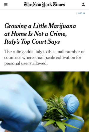 Italians can have a little marijuana: The New York Times  | LOG IN  Growing a Little Marijuana  at Home Is Not a Crime,  Italy's Top Court Says  The ruling adds Italy to the small number of  countries where small-scale cultivation for  personal use is allowed.  II Italians can have a little marijuana