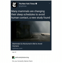 New York, Tumblr, and New York Times: The New York Times  @nytimes  Many mammals are changing  their sleep schedules to avoid  human contact, a new study found  Mammals Go Nocturnal in Bid to Avoid  Humans  nytimes.com  me irl  delicatelybalancing  Do you honestly blame them also @orangefuzzysocks and i need some new profile pics!! dm us if you're interested in making them pls!!!!!