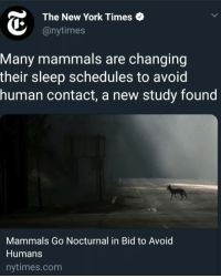 New York, New York Times, and Nytimes: The New York Times  @nytimes  Many mammals are changing  their sleep schedules to avoid  human contact, a new study found  Mammals Go Nocturnal in Bid to Avoid  Humans  nytimes.com me irl