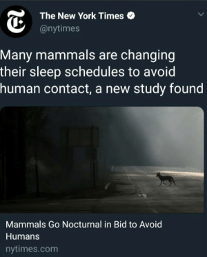 Dank, Memes, and New York: The New York Times  @nytimes  Many mammals are changing  their sleep schedules to avoid  human contact, a new study found  Mammals Go Nocturnal in Bid to Avoid  Humans  nytimes.com me irl by RockGamingReal FOLLOW HERE 4 MORE MEMES.