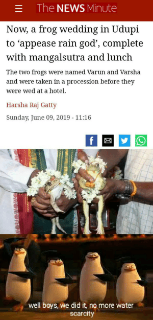 no more water issues: The NEWS Minute  Now, a frog wedding in Udupi  to 'appease rain god', complete  with mangalsutra and lunch  The two frogs  were named Varun and Varsha  and were taken in a procession before they  were wed at a hotel.  Harsha Raj Gatty  Sunday, June 09, 2019 - 11:16  f  well boys, we did it, no more water  scarcity  1I1 no more water issues