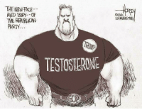 Apparently this is supposed to be a bad thing.: THE NEWTACE  PARTY  TESTOSTERONE Apparently this is supposed to be a bad thing.