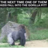 RT @Dimperachi:: THE NEXT TIME ONE OF THEM  KIDS FALL INTO THE GORILLA PITT RT @Dimperachi:
