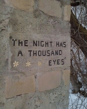 Eyes,  Night, and The: THE NIGHT HAS  A THOUSAND  EYES