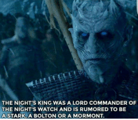 Memes, 🤖, and Lord: THE NIGHT'S KING WAS A LORD COMMANDER OF  THE NIGHT'S WATCH AND IS RUMORED TO BE  A STARK, A BOLTON OR A MORMONT 😮