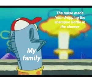 Family, Shower, and Time: The noise made  from dropping the  shampoo bottle in  the shower  My  family Every time