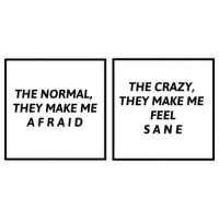Crazy, Make, and They: THE NORMAL, THEY MAKE ME  THEY MAKE ME  THE CRAZY,  FEEL  SANE  AFRAID
