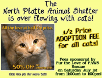 Animals, Cats, and Head: The  North Platte ftnimal Shelter  is over flowing with cats!  Allthe love at half the price.  1/2 Price  ADOPTION FEE  for all cats!  /22  50% OFF-ption fees  aidk the pte for more thfel from 11:00am to 100pm!  Fees sponsored b  Fur the Love of PAWS  Rescue  on Saturday July 1st ➡➡ Can't adopt? Please share! ⬅⬅  📣📢 In an effort to help more animals find homes before the incoming surge of pets for the 4th of July - the HALF PRICE ADOPTIONS HAS BEEN EXTENDED! 📣📢 Open Monday from 1-5, head down and SAVE A LIFE! 🐈 💗 *ALL THE LOVE, HALF THE PRICE!* 💗