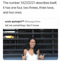 Memes, Too Much, and Time: The number 14233221 describes itself;  it has one four, two threes, three twos,  and two ones.  azula apologistTM @itsyagurlmex  tell me something i don't know People have too much time on their hands 😂😭 • Follow @savagememesss for more posts daily