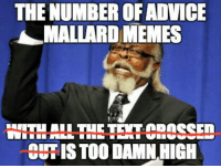 I know, right?: THE NUMBER OF ADVICE  MALLARD MEMES  REHHALL THETE CROSSED  CEHISTOO DAMN HIGH I know, right?