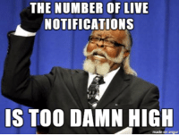 I'm looking at you Facebook....: THE NUMBER OF LIVE  NOTIFICATIONS  IS TOO DAMN HIGH  made on imgur I'm looking at you Facebook....