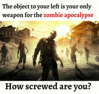 Memes, Zombies, and Zombie: The object to your left is your only  weapon for the zombie apocalypse  How screwed are you?
