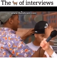 Had to post something pure for the day to cancel out the niggatry, this put a smile on my face 😞: The of interviews  www.Bandicam.com Had to post something pure for the day to cancel out the niggatry, this put a smile on my face 😞