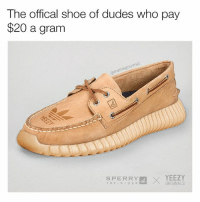 "Dad, Memes, and Yeezy: The offical shoe of dudes who pay  $20 a gram  our me  SPERRY  EX YEEZY  T O P S I D E R  ORIGINALS ""My dad will freakin sue you bro"""