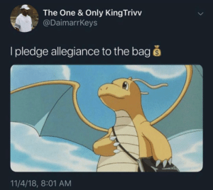 Dank, Memes, and Target: The One & Only KingTrivv  @DaimarrKeys  I pledge allegiance to the bag š  11/4/18, 8:01 AM Secure the bag! by Anatoliy-Baranov MORE MEMES