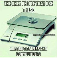Gym, Drug, and Bodybuilders: THE ONIN PEOPLETHATUSE  THESE  @gymmenmesandmotivation  CAMRY  ARE DRUG DEALERSANDO  BODYBUILDERS @aestheticelite 😂😂😂