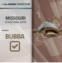 The Onion Projects Bubba, The Biggest, Meanest Catfish In The Mississip', To Win Missouri | More live election coverage from The Onion: http://trib.al/vKozMSc: the ONION PROJECTION  MISSOURI  10 ELECTORAL VOTES  WINNER  BUBBA The Onion Projects Bubba, The Biggest, Meanest Catfish In The Mississip', To Win Missouri | More live election coverage from The Onion: http://trib.al/vKozMSc