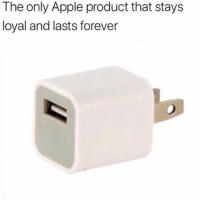 Apple, Facts, and Memes: The only Apple product that stays  loyal and lasts forever Facts 💯😂 memesapp @memesmerch