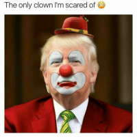 I'm just going to leave this here: The only clown I'm scared of I'm just going to leave this here
