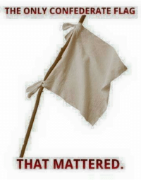 Just one more  It's just too good  ~M3: THE ONLY CONFEDERATE FLAG  THAT MATTERED. Just one more  It's just too good  ~M3