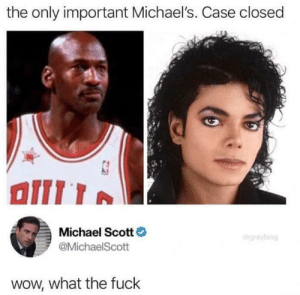 My name is Michael WTF: the only important Michael's. Case closed  Michael Scott  @MichaelScott  wow, what the fuck My name is Michael WTF