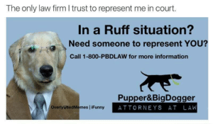 In a ruff situation? by bayrafd FOLLOW 4 MORE MEMES.: The only law firm I trust to represent me in court.  In a Ruff situation?  Need someone to represent YOU?  Call 1-800-PBDLAW for more information  Pupper&BigDogger  ATTORNEYS AT LAW  OverlyUSedMemes iFunny In a ruff situation? by bayrafd FOLLOW 4 MORE MEMES.