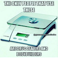 Gym, Free, and Link: THE ONLY PEOPLETHATUSE  THESE  @gymmemesand motivation  CAMRY  ARE DRUGDEALERSAND  BODYBUILDERS 😂😂😂 . @DOYOUEVEN 👈🏼 FREE SHIPPING ON ALL ordered 🚚🌍 just tap the link in our BIO ✔️