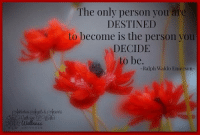 The only person you are  DESTINED  to become is the person you  DECIDE  to be  Ralph Waldo Emerson The only person you are DESTINED to become is the person you DECIDE to be. -Ralph Waldo Emerson- #WUVIP