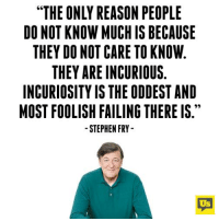 "Memes, Stephen, and Reason: ""THE ONLY REASON PEOPLE  DO NOT KNOW MUCH IS BECAUSE  THEY DO NOT CARE TO KNOW  THEY ARE INCURIOUS.  INCURIOSITY IS THE ODDEST AND  MOST FOOLISH FAILING THERE IS.  STEPHEN FRY  Us Nailed it."