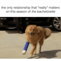 💖💖💖: the only relationship that really matters  on this season of the bachelorette  @bustle 💖💖💖