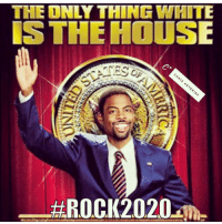 Thinking about running in2020 wish me luck.: THE ONLY THIN TMHITE  IS THE HOUSE  C+  千  &ROCK2020-me  BRIC.  LINo Thinking about running in2020 wish me luck.