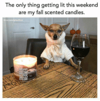 Damn that's good: The only thing getting lit this weekend  are my fall scented candles.  gmarykatefelisofficial Damn that's good