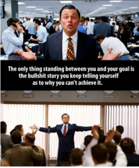 The Wolf of Wall Street: The only thing standing between you and yo  goal is  the bullshit story you keep telling yourself  as to why you can't achieve it. The Wolf of Wall Street