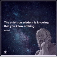 Memes, Socrates, and Wisdom: The only true wisdom is knowing  that you know nothing.  Socrates Higher Perspective via Heart Centered Rebalancing