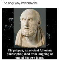 Memes, 🤖, and Philosophers: The only way I wanna die  Chrysippus, an ancient Athenian  philosopher, died from laughing at  one of his own jokes. Omg😂😂