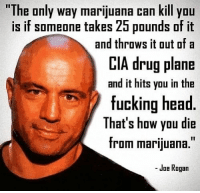 True https://t.co/JB6iftmM7B: The only way marijuana can kill yOu  is if someone takes 25 pounds of it  CIA drug plane  fucking head  and throws it out ofa  and it hits you in the  That's how you die  from marijuana.  - Joe Rogan True https://t.co/JB6iftmM7B