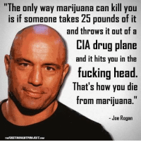 "- Joe Rogan: ""The only way marijuana can kill you  is if someone takes 25 pounds of it  and throws it out of a  CIA drug plane  and it hits you in the  fucking head  That's how you die  from marijuana.""  Joe Rogan  THEFREETHOUCHTPROJECT coMi - Joe Rogan"