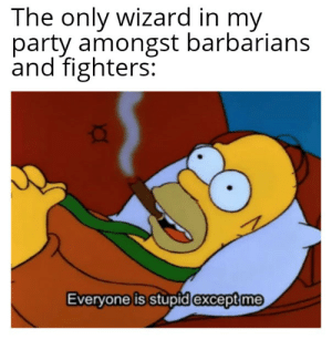 Party, DnD, and Wizard: The only wizard in my  party amongst barbarians  and fighters:  Everyone is stupid except me Get that high score Wis