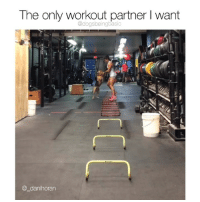 Memes, 🤖, and Wart: The only workout partner I wart  @dogsbeingbasic  @_danihoran The perfect trainer does exist. Via @_danihoran