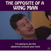 Memes, 🤖, and Man: THE OPPOSITE OF A  WING MAN  I'm going to be the  albatross around your neck  CTH Every young Lothario needs a trusty albatross to balance out the wing man.