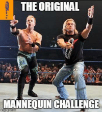 Memes, Photography, and Mannequin: THE ORIGINAL  MANNEQUIN CHALLENGE For the benfit of those with flash photography...