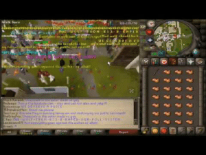 The OSRS Gay Pride Event Riot Runescape 2017 - YouTube | Riot Meme